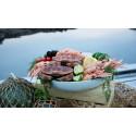 Stort intresse för de bohuslänska skaldjuren