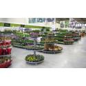 Blomsterlandet fortsätter sin expansion – ny butik i Kungsbacka