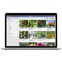 Planter - Nytt digitalt projektverktyg för professionella inom trädgård