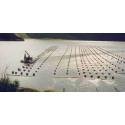 Kalmar kommun levererar musslor till lantbruksuniversitetet