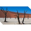 Namibia – a land of beautiful extremes
