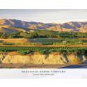 The Patriarch – fullmatad hyllning till nyzeeländsk vinpionjär