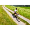 Elcykelpremie på 25% ska få fler att  cykla