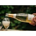 Chardonnaydominans i Aÿ - Ayala Blanc de Blancs 2008
