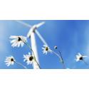 Ökade fjärrvärmeleveranser för Sundsvall Energi