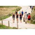 Träna på semestern – då ger sig svenskarna ut på promenader