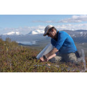 Pressinbjudan: Upplev Arktiska dagar i Abisko 27 – 28 juni