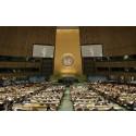 """UN and network marketing"" / ""ООН и сетевой маркетинг"""