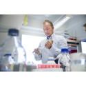 Proteinkomplex samordnar genuttryck genom ompositionering av DNA i celler
