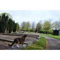 Kyrkogårdskonferens på Helsingborgs stadsteater: Spännande tid i begravningsbranschen