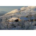 Buustamons Fjällgård återigen på prispallen på Världens största Skidgala