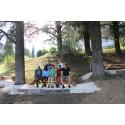 Einladung zum Verweilen. Neue Bänke von Hansjörg Palm im Goetheanum-Park