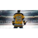 Beijer Byggmaterial förlänger som huvudsponsor till Svenska Hockeyligan