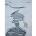 Oppstart av framtidens observasjonssystem for Arktis