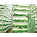 Europe, Middle East and Africa Vertical Farming, Plant Factory Market Drivers and Challenges Report 2022