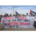 Öppet brev till deltagare i COP22 från tre västsahariska ungdomsorganisationer
