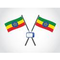 Ethiopia's INSA agency selects Eutelsat for new Ethiosat TV platform