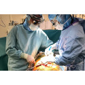 Lovande immunterapi mot allvarlig njurinflammation prövas i internationell studie