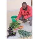 Ekolådan stödjer ekologisk odling - nu också i Burkina Faso
