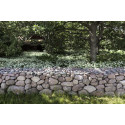 Stenmur och kirskål på Astrid Lindgrens Näx