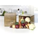Kasvimaani-kasvisboxi on värikäs kattaus kotimaisia kasviksia kotiovelle toimitettuna