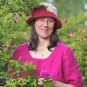 Välfyllt program och många utställare till Nolia Trädgård