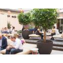 HTL Kungsgatan öppnar dörrarna mot innergården - och en helt ny hotell-lounge