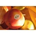 Satsning på mer frukt under hösten