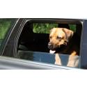 Lämna inte hunden i bilen!