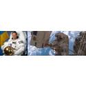 Sveriges enda astronaut besöker Malmös skolor