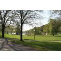 Svevia sköter Solnas gator och parker