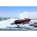 Varning för kraftig blåst: Ellevio fördubblar beredskapen
