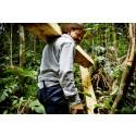 Verdens Skove: Succes kræver krav til virksomhederne