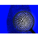 Global Forensic Medicine Market 2022: Forecasts, Analysis and Growths