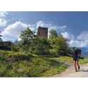 De nordlige ruter af Camino de Santiago på UNESCOs Verdensarvsliste
