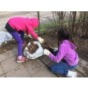 Vinst till Innertavle skola för städning av skolgård
