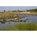 Hav ger 3,9 miljoner för att skydda havsvikar i Stockholms skärgård