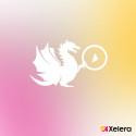 Xelera bygger filmkanal för ökad mångfald åt Göteborg International Film Festival