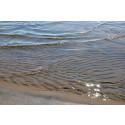 Otjänligt badvatten vid Pite Havsbad och Kullen Öjebyn