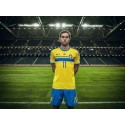 adidas presenterar nya svenska VM-tröjan
