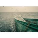 HaV ger tre miljoner kronor till att utveckla nya selektiva fiskeredskap