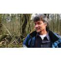 Natursyn: Når en skov ikke bare er en skov