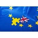 8 av 10 näringslivstoppar tror på negativa konsekvenser av en Brexit