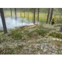 Pressinbjudan: Rapportera från säsongens första skogsbränningar