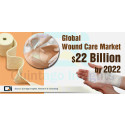 Wound Care Market Size – Industry, Share and Growth, Forecast 2018 – 2022: Paul Hartmann AG, NovaBay Pharmaceuticals, Inc.,  Derma Sciences, Inc.