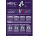 Lungcancer infografik med nordiska och svenska fakta