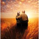 Antidepressiva ökar risken för benbrott och dödsfall hos äldre