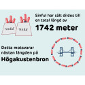1742 meter dildo