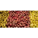 Förutsättningar för livsmedelsförsörjning vid kris