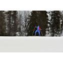 Ny stor skidfest i Gällivare